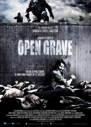 Открытая могила (2013)
